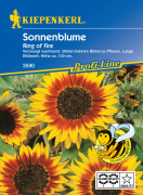 Kiepenkerl Sonnenblume Ring of Fire 1 Portion