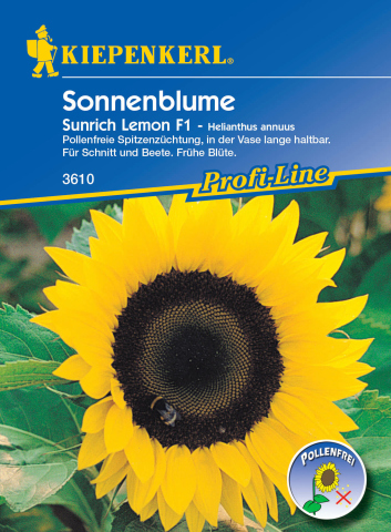 Kiepenkerl Sonnenblume Sunrich Lemon F1 1 Portion